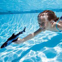 Dive N' Glide Shark
